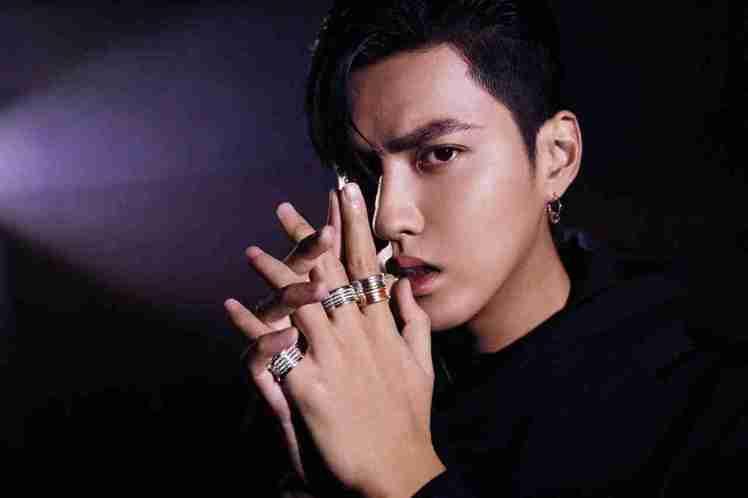 吳亦凡搭配了寶格麗B.zero1系列20周年系列珠寶。圖/BVLGARI提供