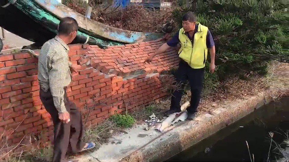 有民宅整片圍牆被震倒。記者蔡維斌/攝影