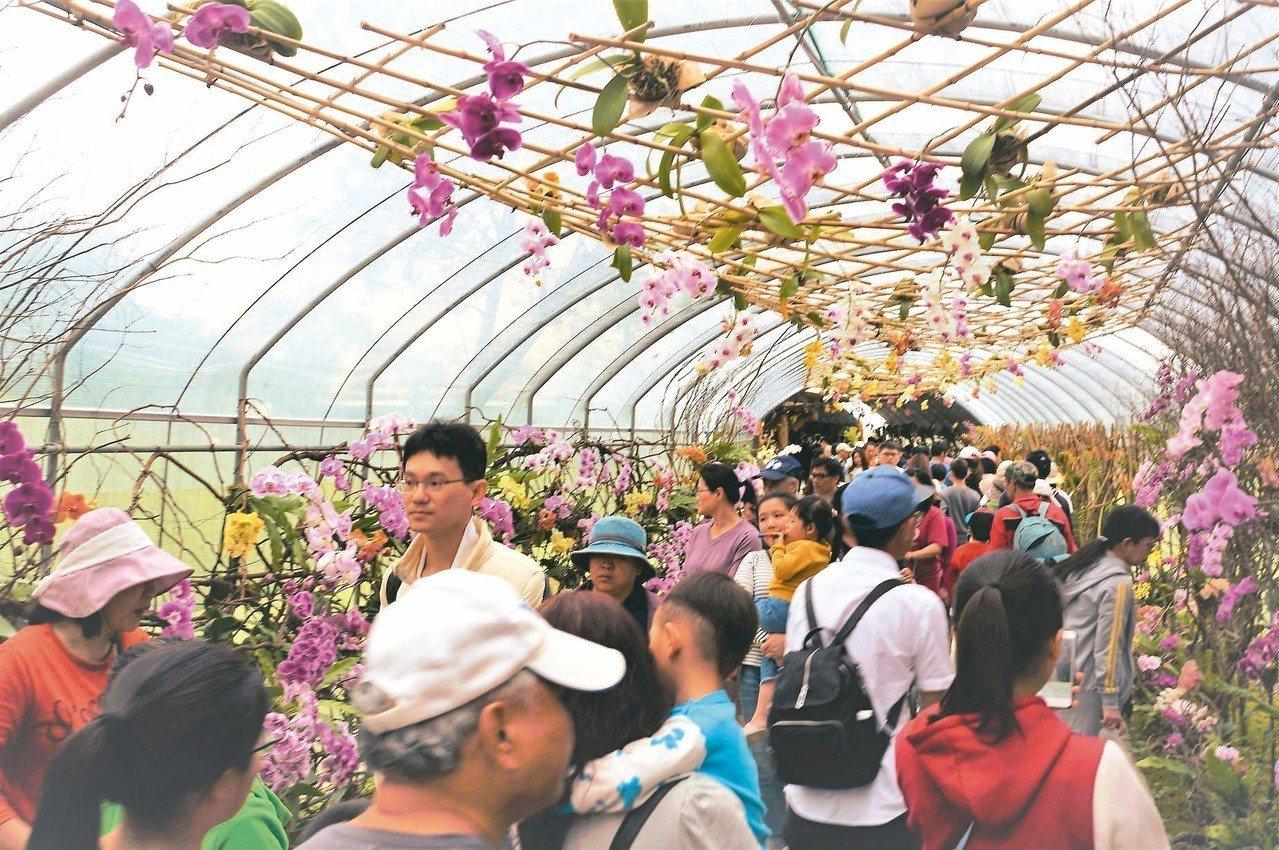 宜蘭綠色博覽會活動在4天連假期間,總共吸引超過10萬名遊客入園,蘭花廊道是園區的...