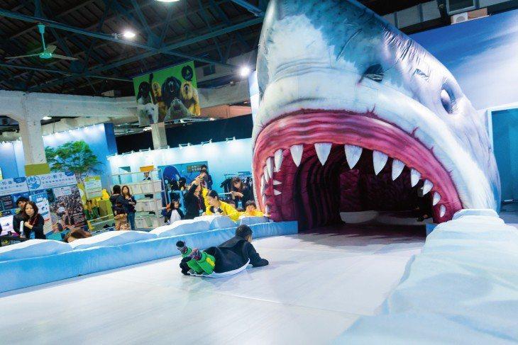 海洋中的生物鏈環環相扣,每日上演著激烈的生存競爭。企鵝泳速雖快,但遇到鯊魚時也是...