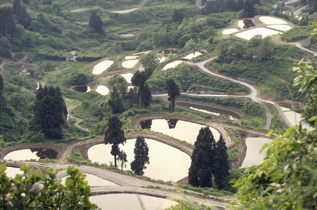 新瀉縣的小千谷市,圖中的池塘就是古早時代培育錦鯉用的養殖池。 圖/歐新社
