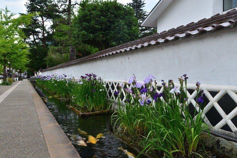 殿町是舊時武家宅邸,有白色的護牆和沿著護牆而建的水道,清澈流水中有許多錦鯉。