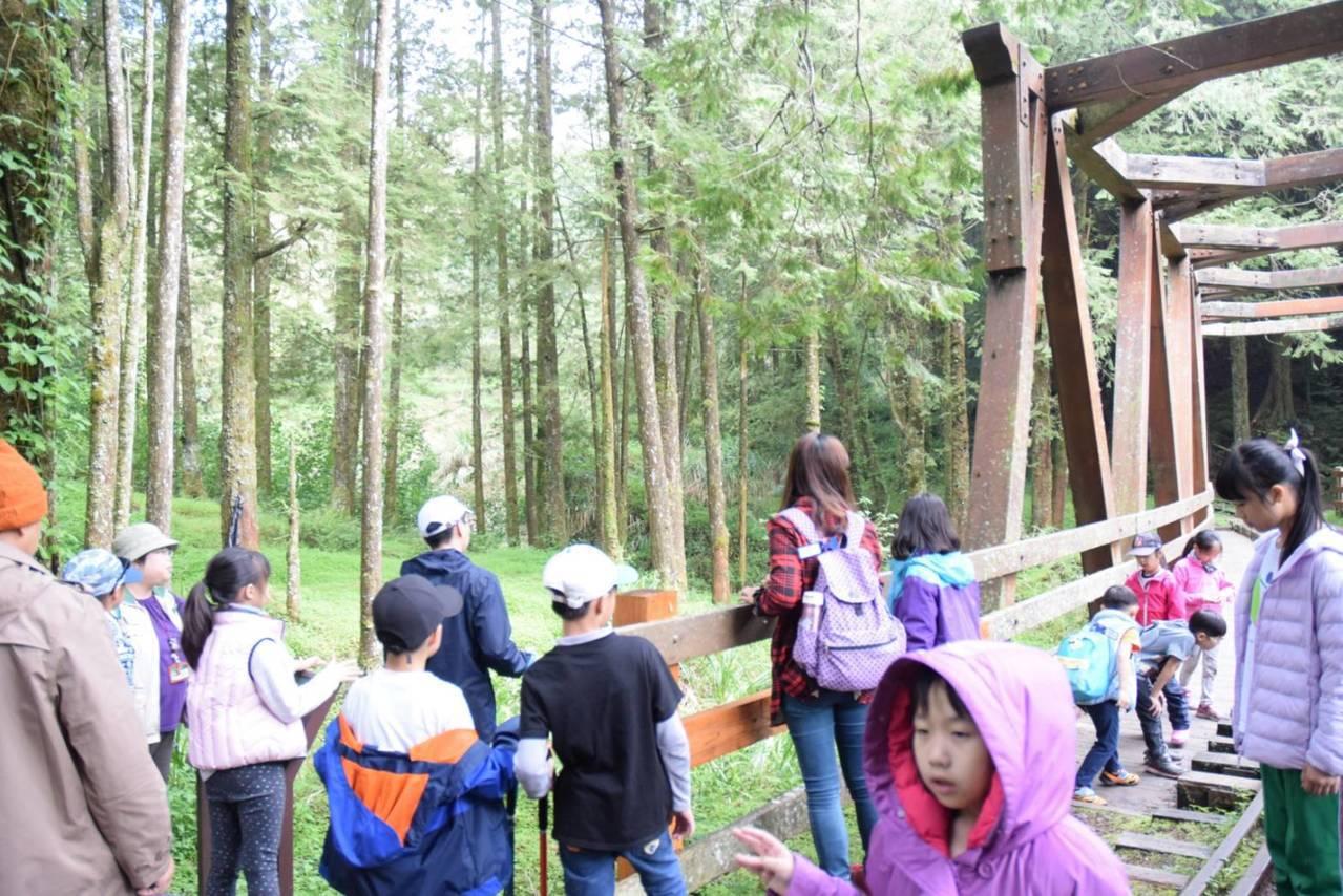 水山步道親生態體驗。圖/嘉義林區管理處提供