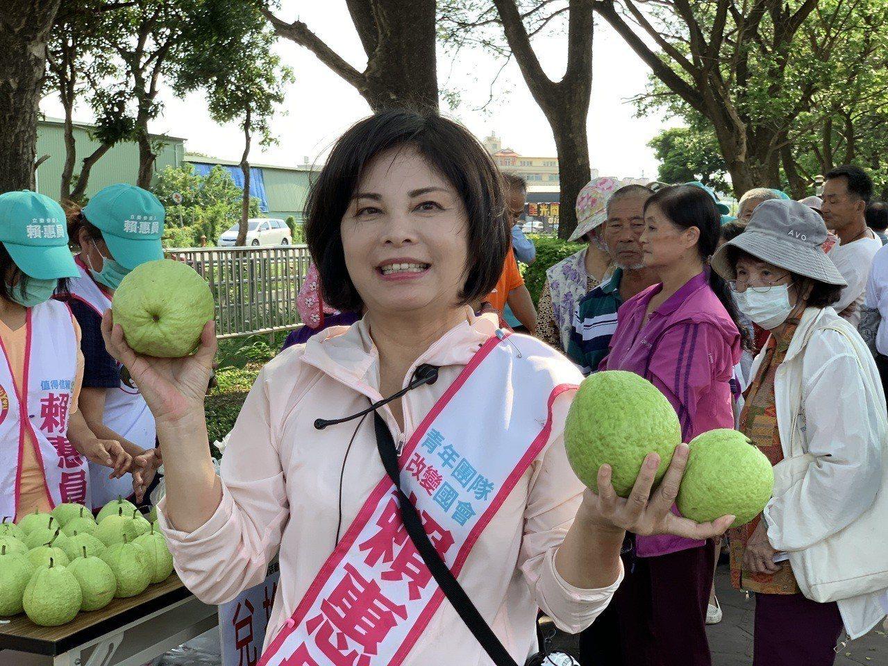 讓「芭樂價格不再芭樂」,投入立委初選的賴惠員義賣芭樂助農民。圖/賴惠員服務處提供