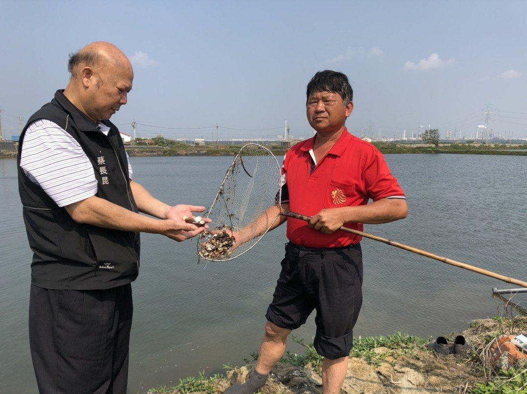 麥寮鄉長蔡長昆(左)陪同林平來巡視魚塭。記者李京昇/攝影