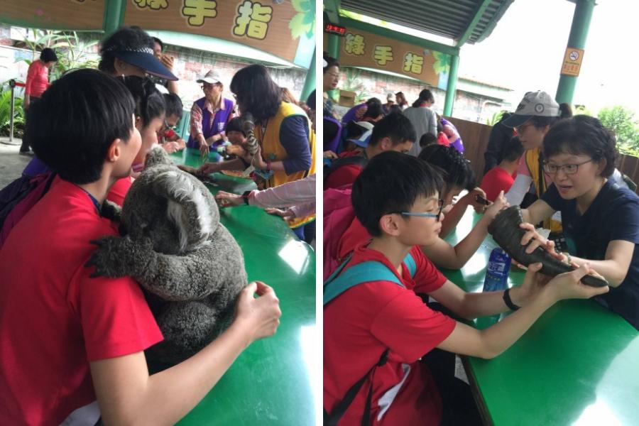 昨日4月9日,國臺圖與臺北市立動物園共同舉辦「動物園郊遊趣」活動,其中觸摸體驗可...
