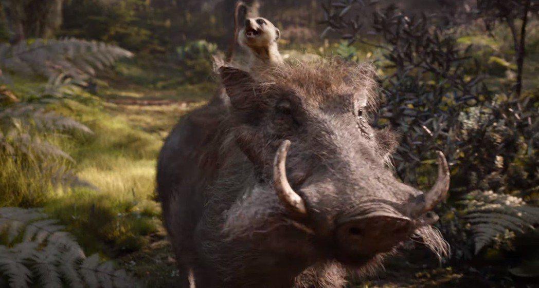 最討喜可愛的彭彭、丁滿在「獅子王」最新預告亮相。圖/翻攝自YouTube