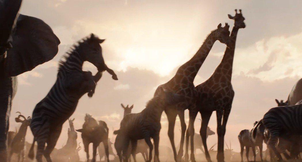 「獅子王」還原動畫原版的經典畫面成績不俗。圖/翻攝自YouTube
