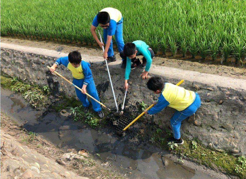 學生們奮力撈起水溝中的每個垃圾。圖/趙廷軒提供