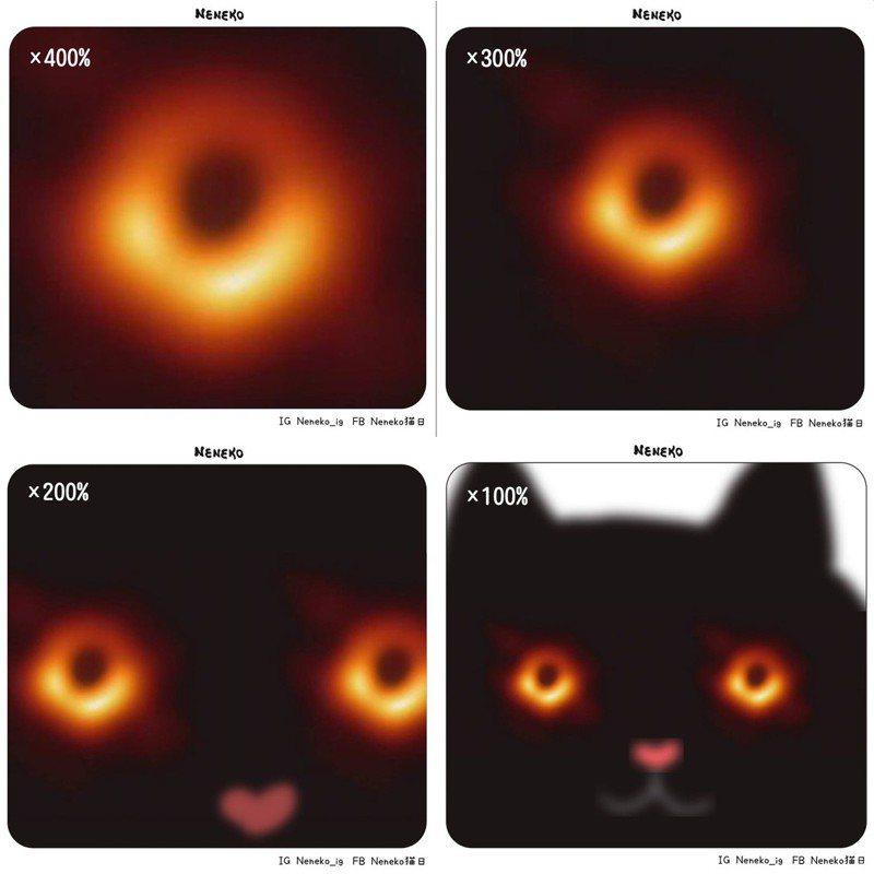 圖片來源/fb粉專「Neneko 貓日」