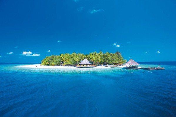 伊瑚魯悅椿度假村時有海龜與海豚漫游於環礁湖中。 圖/悅榕集團