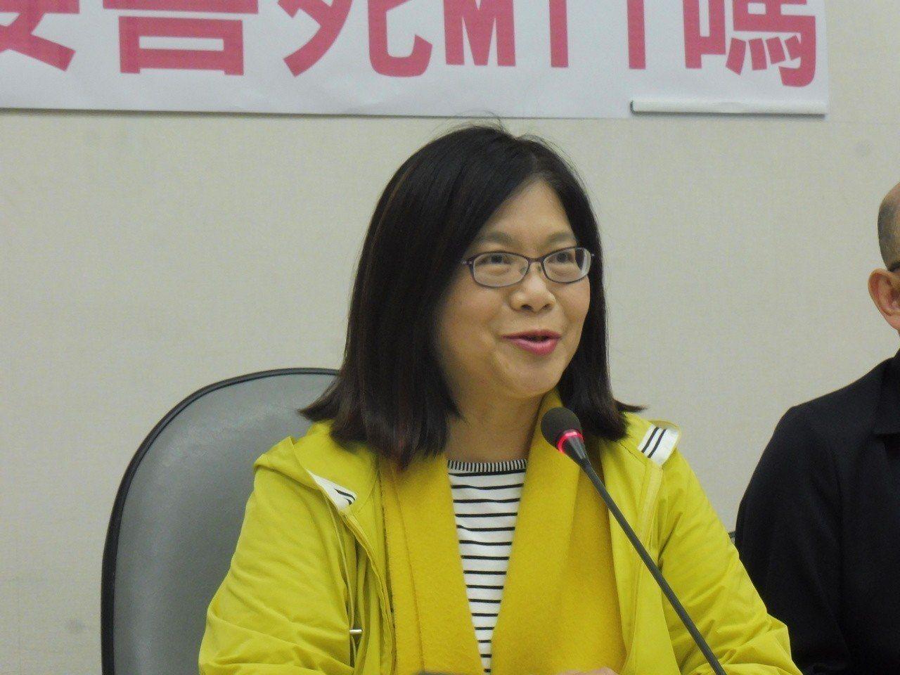 民進黨立委管碧玲。聯合報系資料照/記者賴于榛攝影