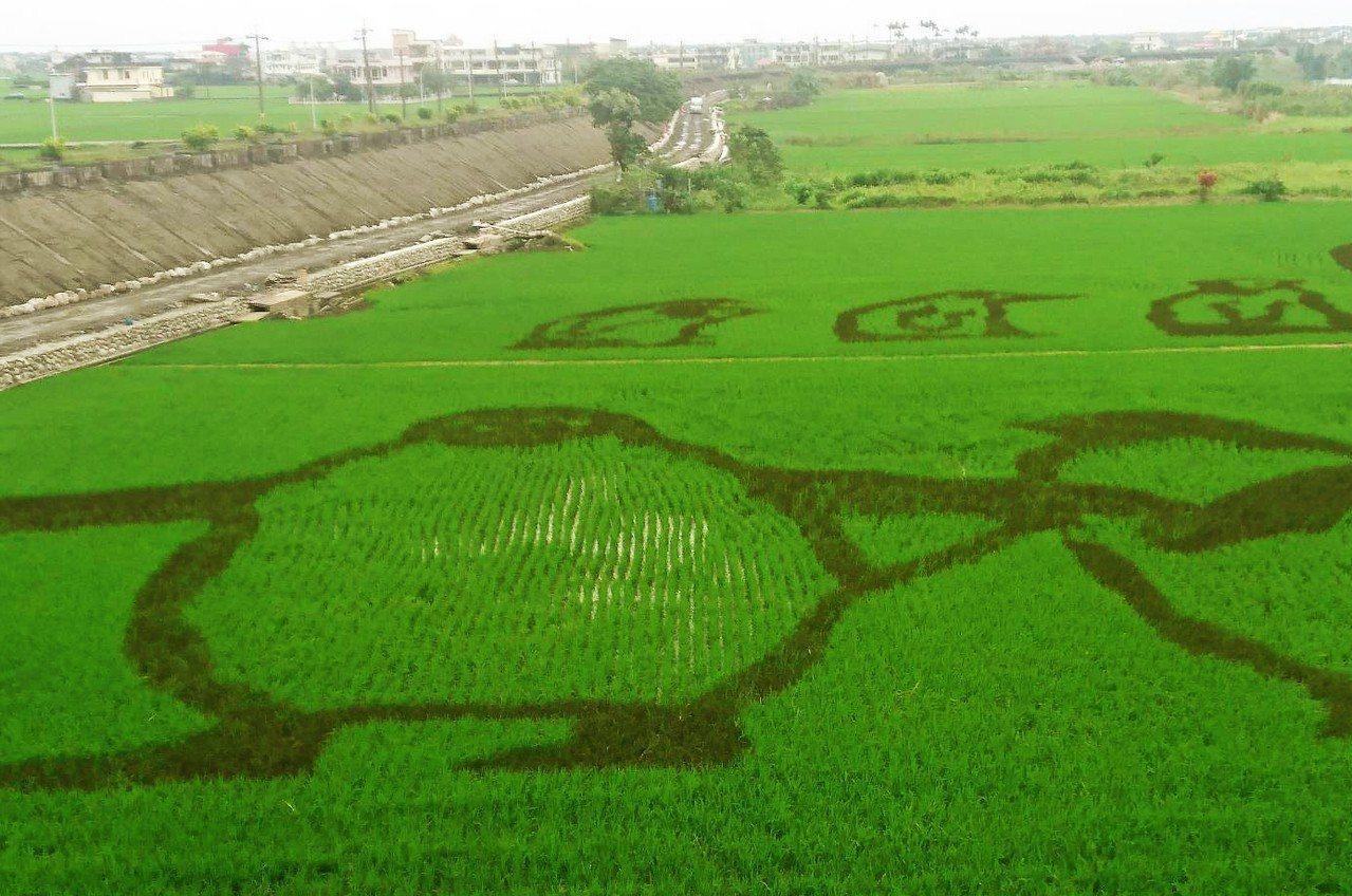 宜蘭稻田裡的「動物狂歡節」登場了,今年在壯圍鄉中央橋下的綠油油秧田裡,「長」出一...