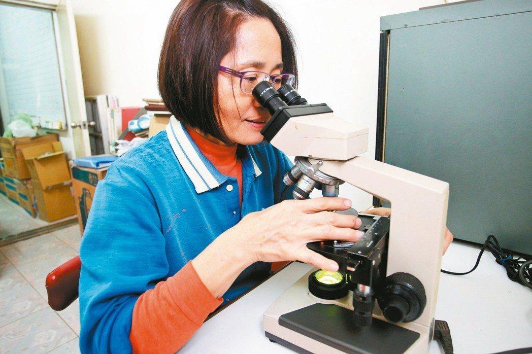 養豬業從引種、育種、批次化管理等,都需要現代化科學技巧;圖為業者使用高倍率顯微鏡...