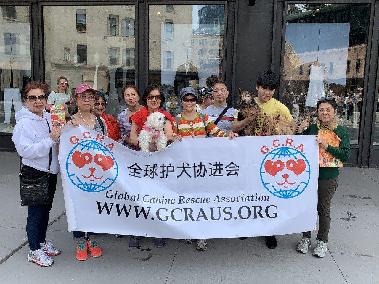 呼籲改變華人殺狗負面形象,華裔踴躍參加素食遊行。 記者和釗宇/攝影