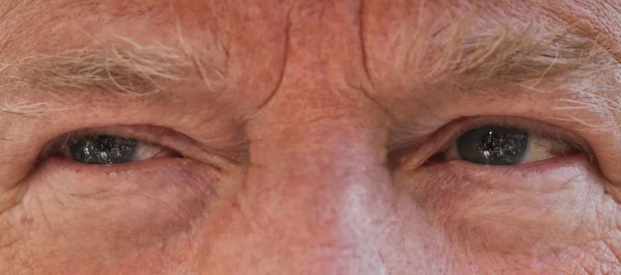 川普的眼睛既令人生畏,又很漂亮?(取材自Buzzfeed網站)