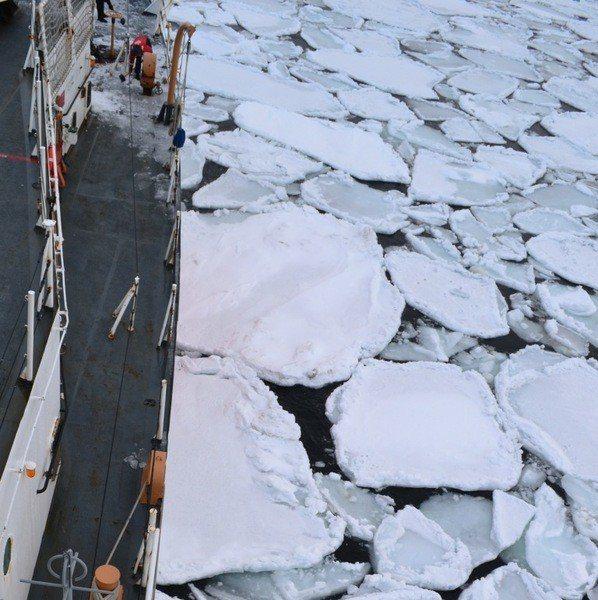 白令海峽的融冰導致洪水震驚了學界,讓學者們懷疑是個案還是整個生態系的改變。(ph...