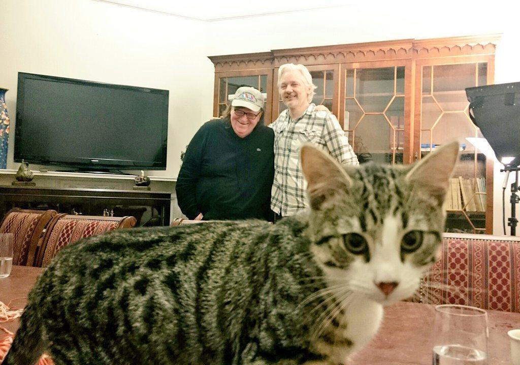 亞桑傑和來訪的美國導演麥可摩爾(左)合照時,貓咪亂入鏡頭。取自推特