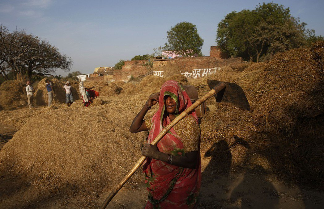 承諾讓「印度發大財」的莫迪,執政期間失業人口高漲,經濟雖然基本上保持強健成長,但...