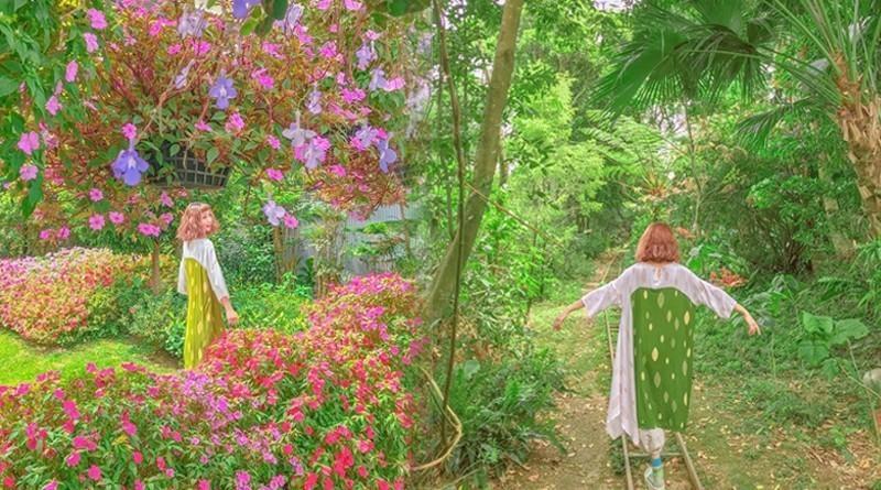 圖/芬多精環繞的花草世界,拍起來很有童話感。網友zora.taiwan授權