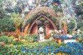 繡球花季來了!苗栗「夢幻農場」不只賞花讓你走進童話裡!