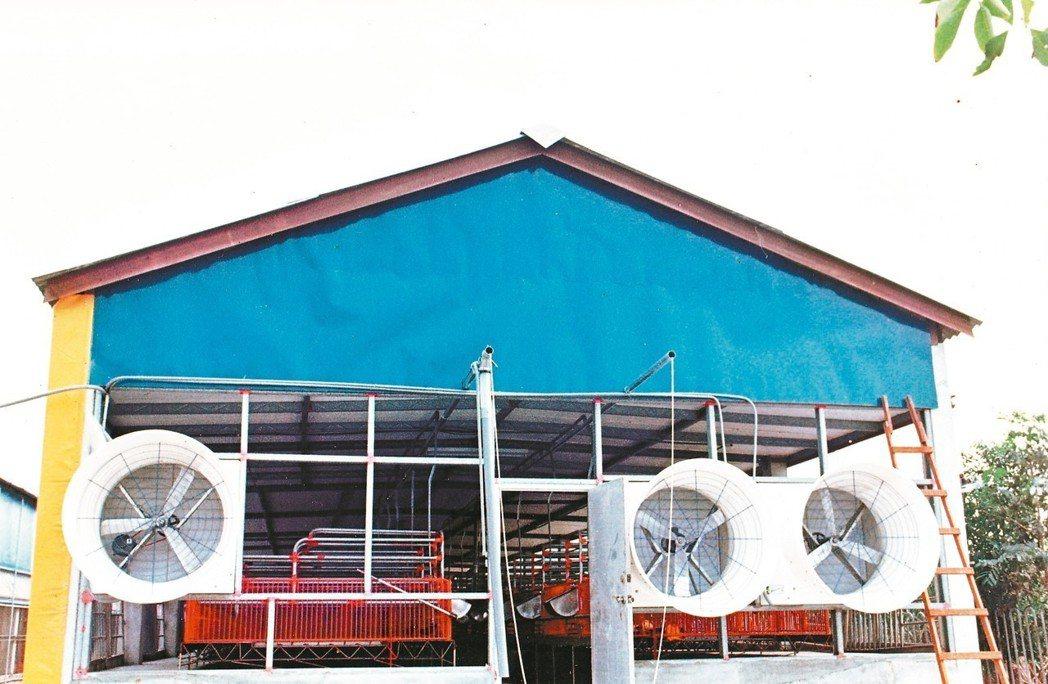 民國八十三年,正在興建水簾高床式豬舍的正鋼豬場。 圖/李昭慶提供