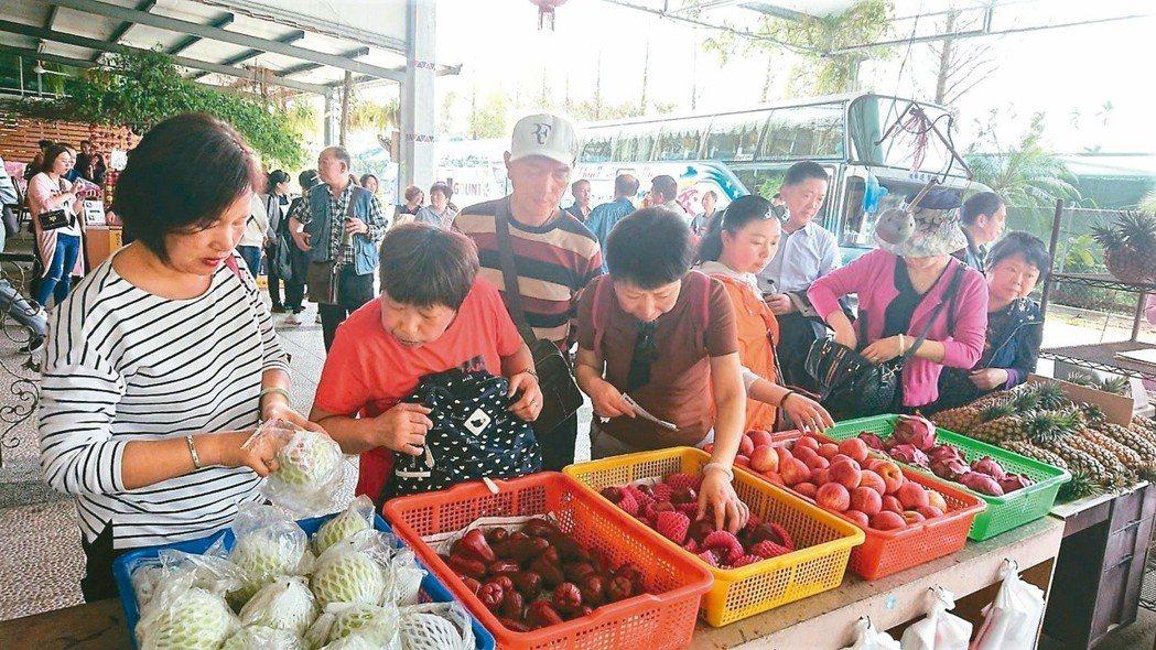 遊客採買水果。 記者卜敏正/攝影