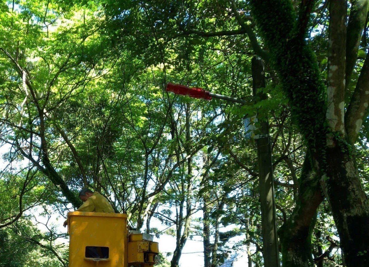 基隆市暖暖區公所把從希望森林到西勢水庫間「綠色隧道」的路燈,全部用紅玻璃紙包覆起...