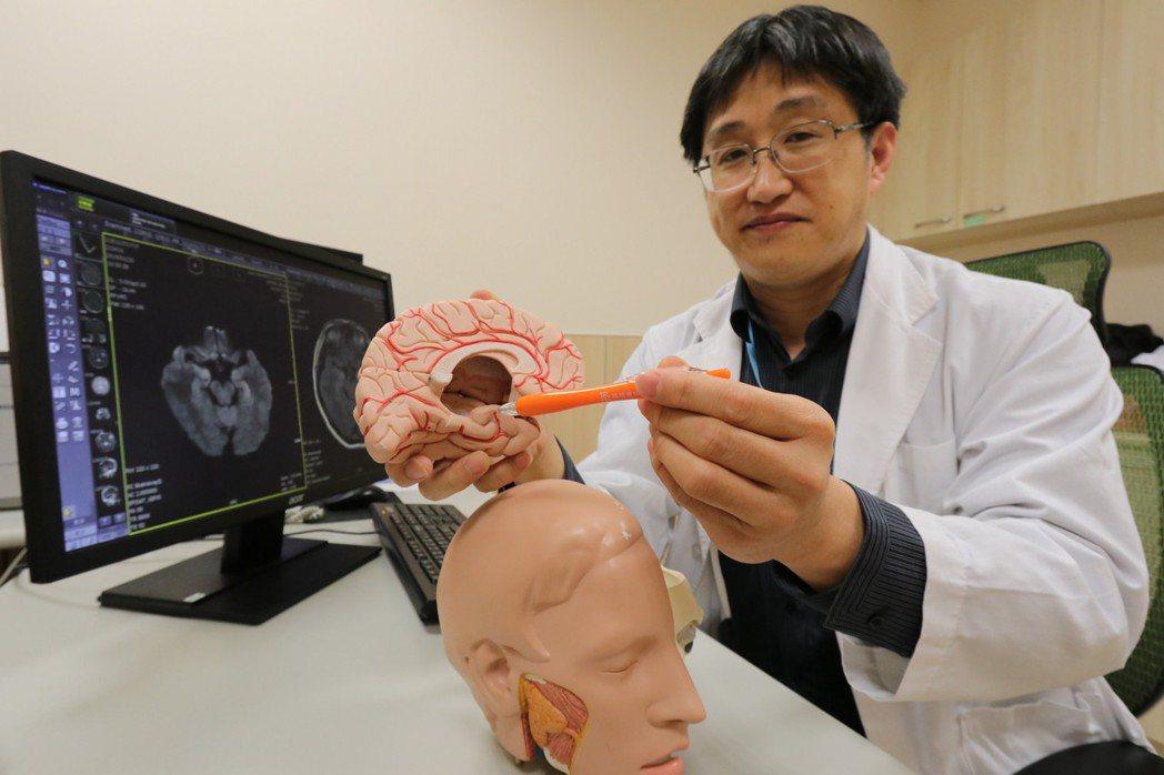 亞洲大學附屬醫院神經內科主任王馨範指出抗NMDA受體腦炎位置。圖/亞洲大學附屬醫...