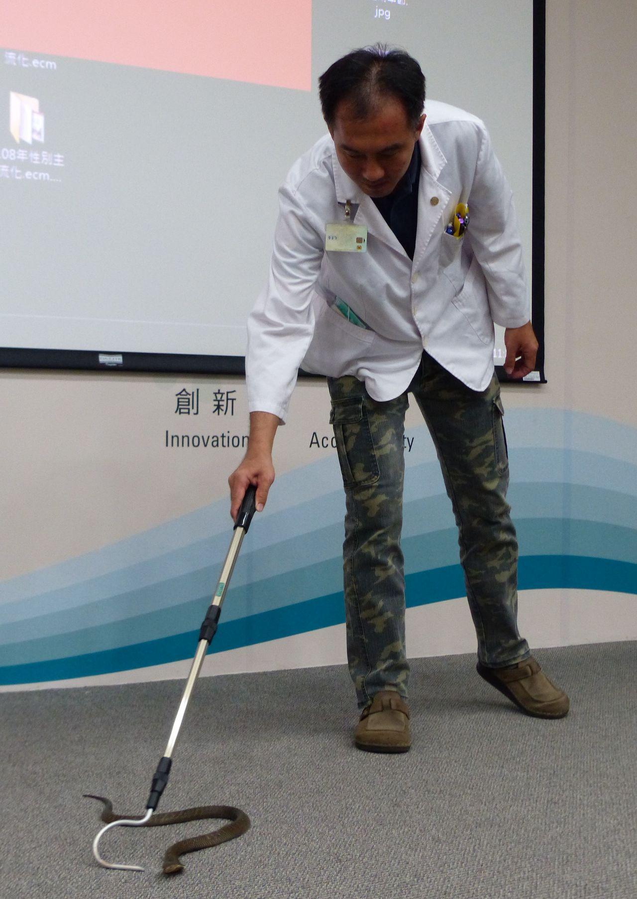 醫師毛彥喬建議,民眾被蛇咬傷,第一時間請嘗試辨認蛇種,並建議簡化處理流程,「沖清...