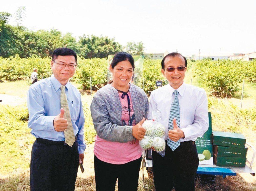 兆豐銀行購買10公噸芭樂挺農民,兆豐銀行南區營運長蘇崑福(右)到芭樂產地為農友加...