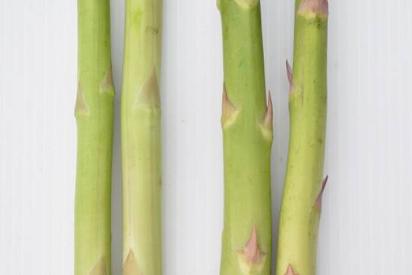 速挑第3招(B版):新鮮綠蘆筍(左2支)鱗片貼合,若產品儲放過久 (右2支)鱗片...