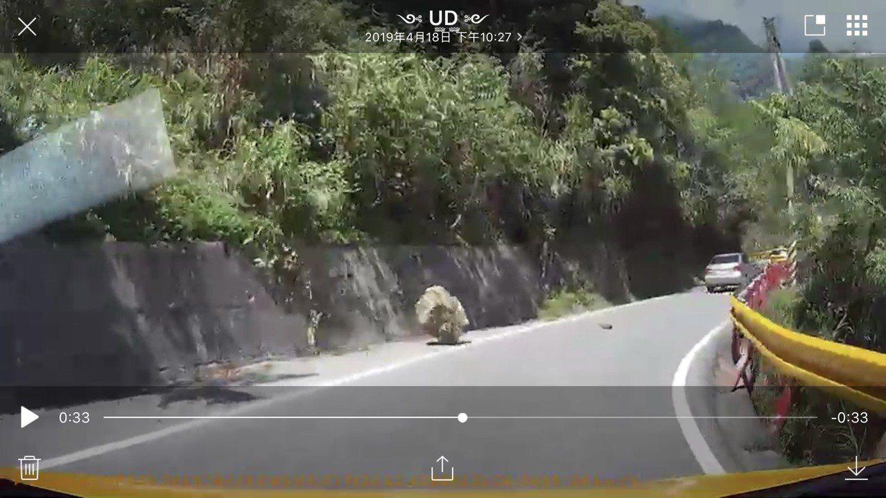 網友在臉書上傳18日地震時在中橫公路遇到的落石畫面,相當驚險。圖/翻攝臉書「花蓮...