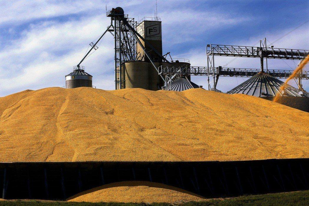 世界貿易組織18日裁決,中國大陸處理美國米、玉米和小麥等榖物進口的關稅配額制並不...