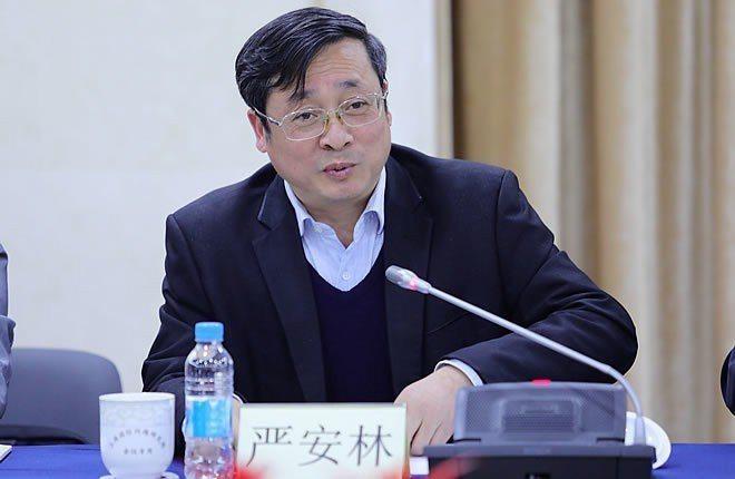 台灣問題研究專家嚴安林不認為郭台銘是台灣版的川普。圖/上海國際問題研究院