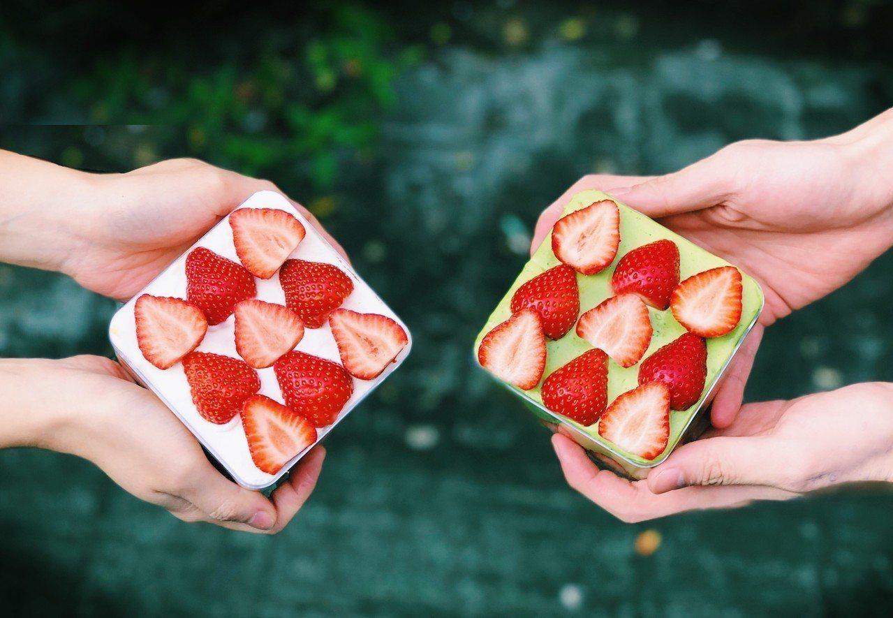 BoKa草莓寶盒(左) 270元、抹茶寶盒(右) 300元。圖/誠品生活提供