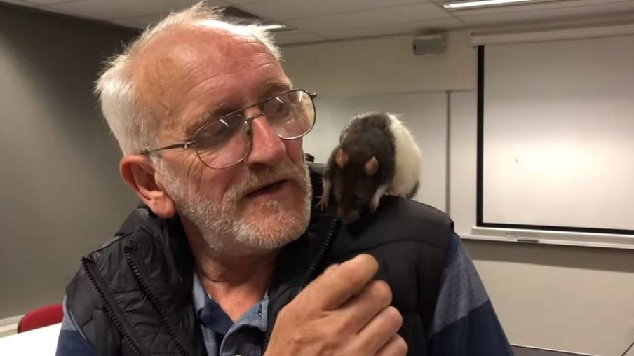 街友克里斯和老鼠夥伴露西重逢。(取自臉書)