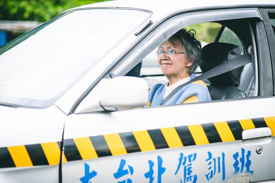陸弈靜20年沒開車,一握方向盤直冒汗。圖/民視提供