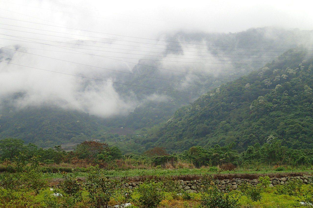 崙天步道入山不久即可見到壯麗山景。記者余衡/攝影