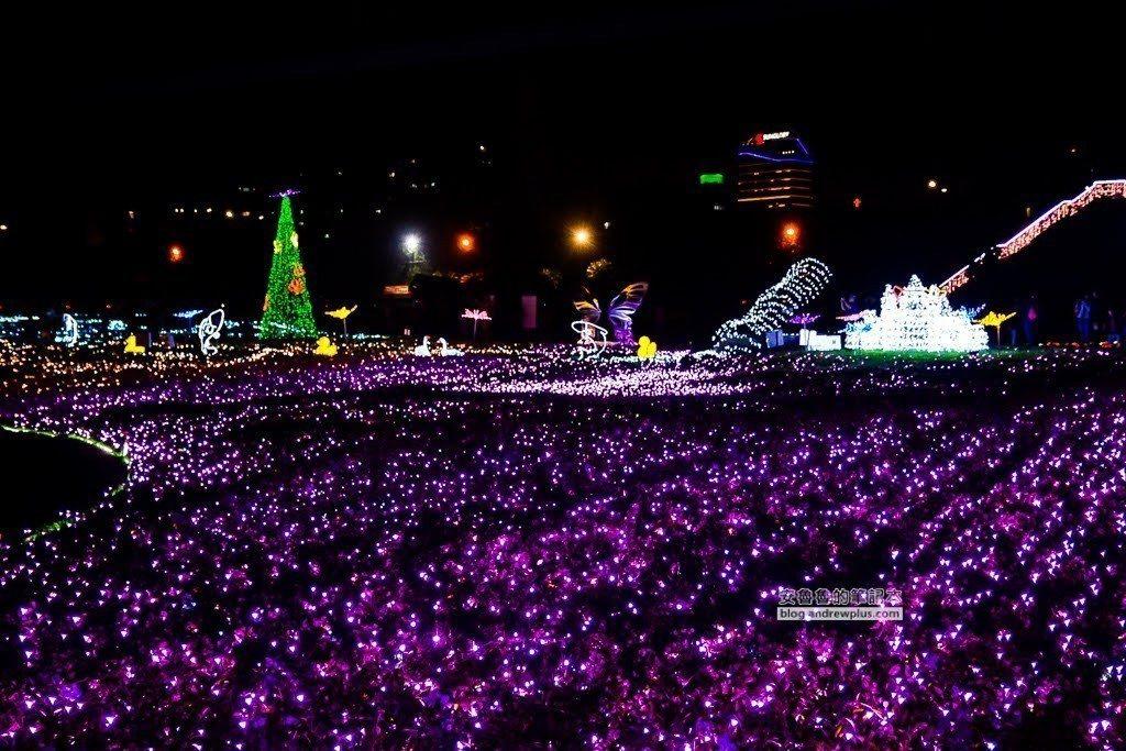 圖/紫色燈海。網友安魯魯與陽光姐授權