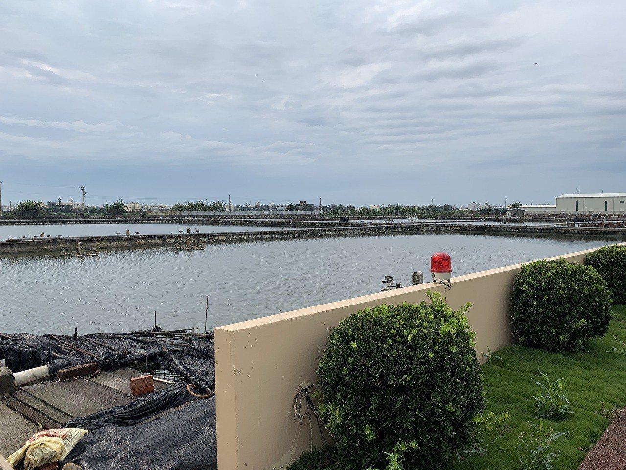 彰化縣福興鄉一名70歲婦人今天上午在自家一旁的養殖魚池餵魚,卻失足掉入魚池,幸附...