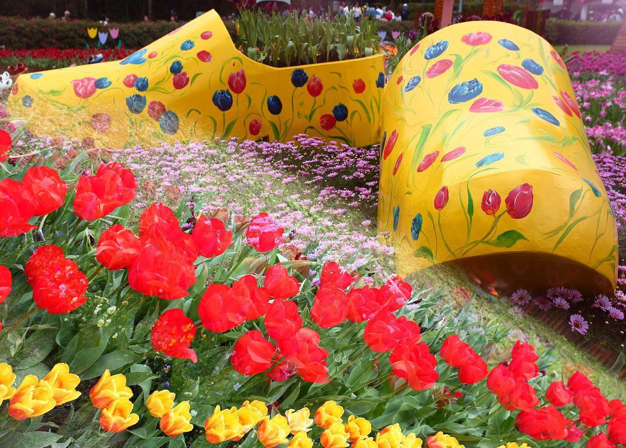 台北市「2019士林官邸鬱金香展」3月落幕,台北市公園處舉辦攝影比賽,作品「童話...