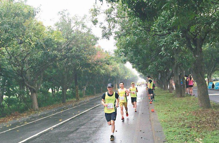 跑步示意圖。 記者謝進盛/攝影