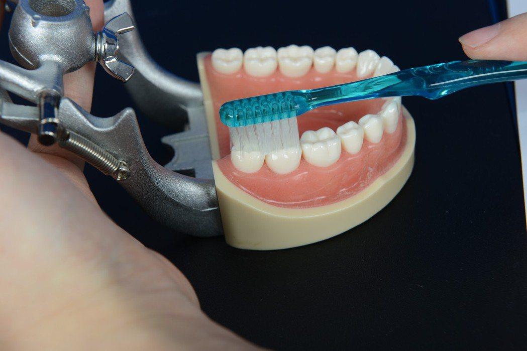 台北慈濟醫院牙科部醫師董醒任表示,牙周病根源都是出於未正確潔牙。 圖/台北慈濟醫...