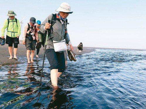 流過藻礁的水不但是黑色,還是溫的。 記者黃昭勇/攝影
