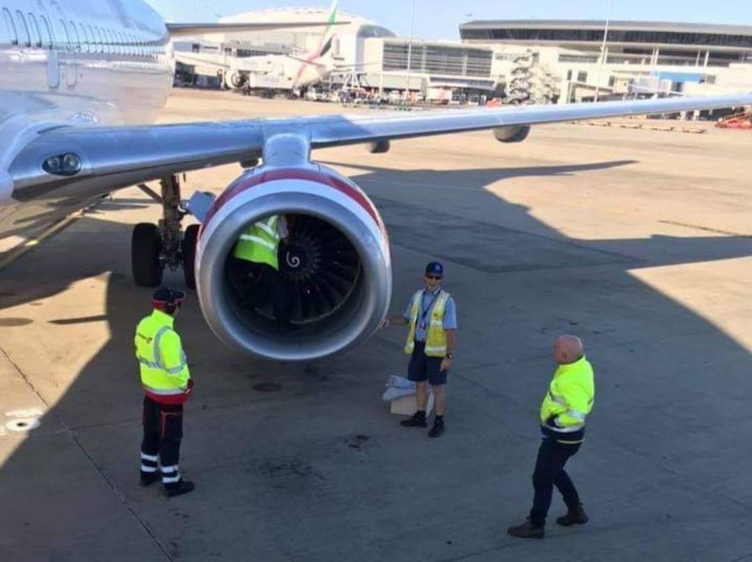 工程師於例行起飛前檢查時發現了貓頭鷹,於是直接爬到引擎之中,試著把牠救出來。圖片...