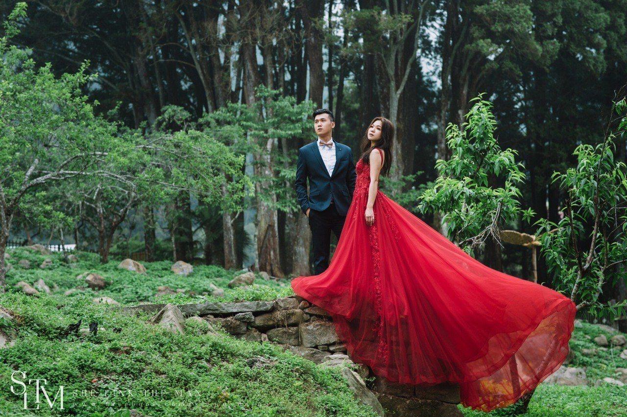 星光下婚禮還另外舉辦「在阿里山看見愛」浪漫婚紗攝影比賽。圖/阿里山管理處提供