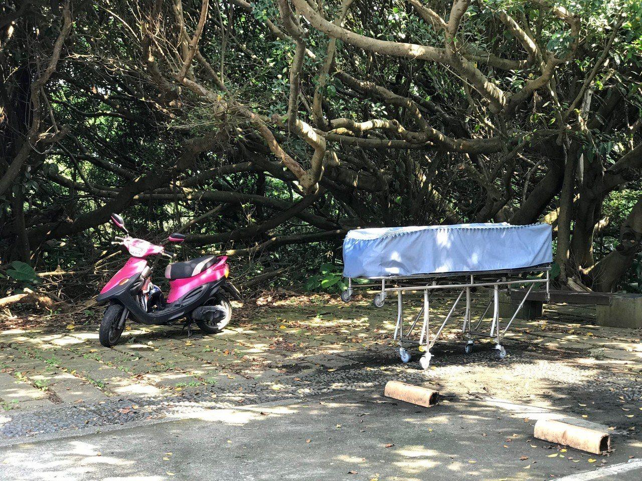 今天清晨,石門富貴角公園驚見一男子上吊自殺,現場未留遺書,警方以車號釐清死者身分...