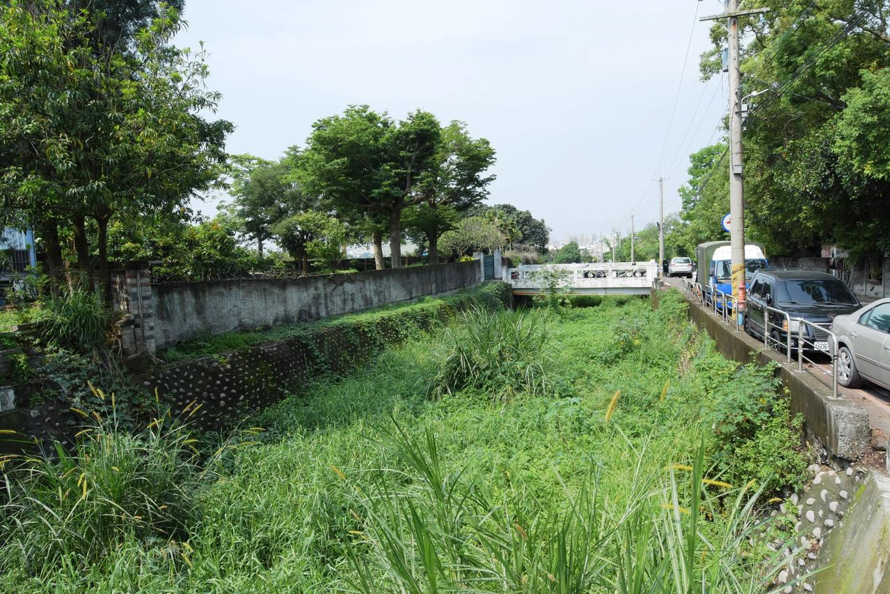 員林市百果山有2條野溪的河道雜草淤積,護岸遭掏空。記者何烱榮/攝影