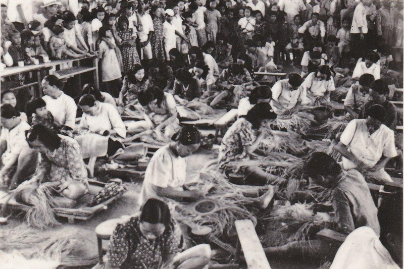 苑裡是藺草編織發源地,圖為早期製作藺草編的盛況。 圖/取自振發帽蓆行